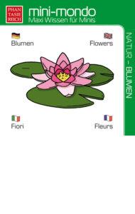 Blumen von Petra Breuer